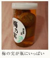 numList_umenomi
